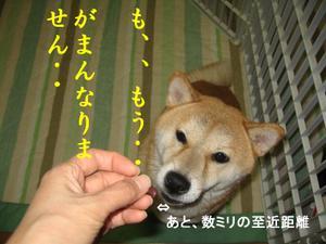 20061210_003_1