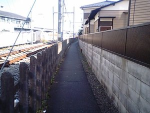 20090207_003